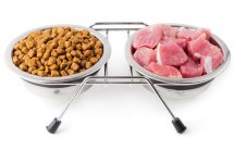 Raw Pet Food| Features | CDC