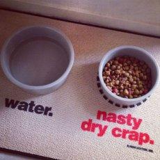 Water/Nasty Dog Food Mat - Zuminal
